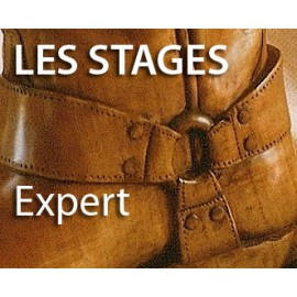 Stage Sculpteur «EXPERT»